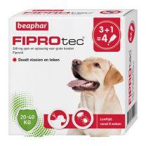 781105493_Fiprotec_Spot-On_hond_20-40kg_3+1-pipetten_15493.jpg